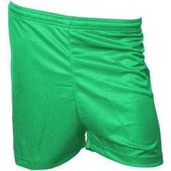 Textiel Heren Korte broeken / Bermuda's Precision  Groen