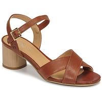 Schoenen Dames Sandalen / Open schoenen Dream in Green ODAINE Tan