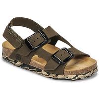 Schoenen Jongens Sandalen / Open schoenen Citrouille et Compagnie KELATU Kaki