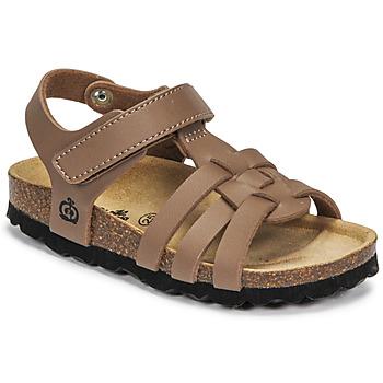 Schoenen Jongens Sandalen / Open schoenen Citrouille et Compagnie JANISOL Brown / Taupe