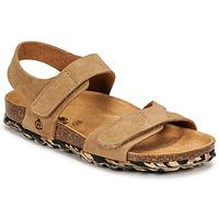 Schoenen Jongens Sandalen / Open schoenen Citrouille et Compagnie BELLI JOE Beige