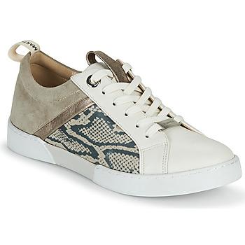 Schoenen Meisjes Lage sneakers JB Martin GELATO Grijs / Wit