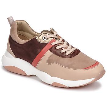 Schoenen Dames Lage sneakers JB Martin WILO  fard