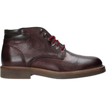 Schoenen Heren Laarzen Exton 852 Anderen