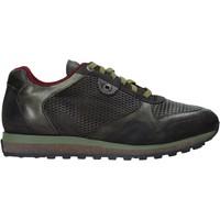 Schoenen Heren Lage sneakers Exton 340 Groen