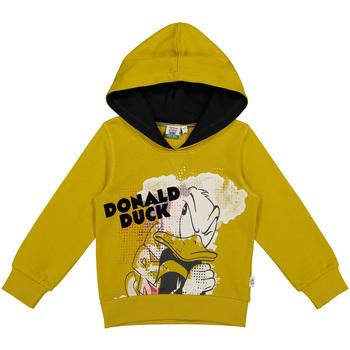 Textiel Kinderen Sweaters / Sweatshirts Melby 40D0022DN Geel