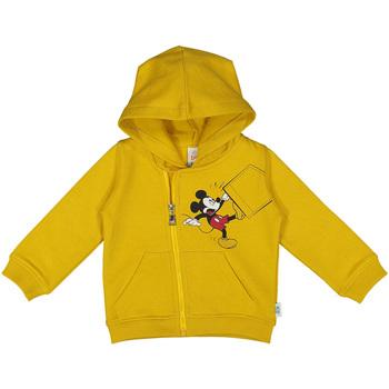 Textiel Kinderen Sweaters / Sweatshirts Melby 20D2030DN Geel