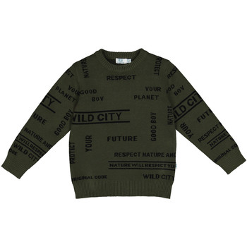 Textiel Kinderen Sweaters / Sweatshirts Melby 40B2032 Groen