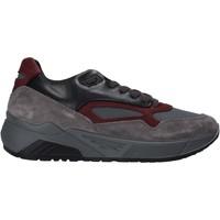 Schoenen Heren Lage sneakers IgI&CO 6142522 Grijs