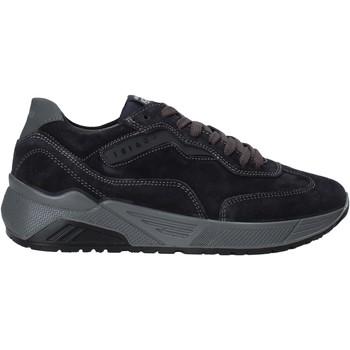 Schoenen Heren Lage sneakers IgI&CO 6142600 Blauw