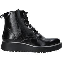 Schoenen Dames Laarzen IgI&CO 6151000 Zwart