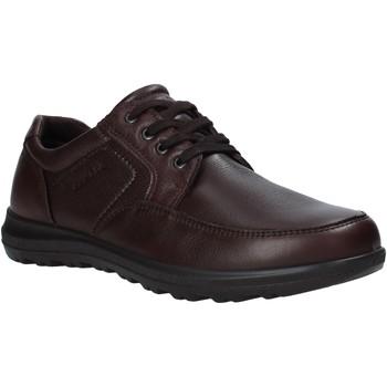 Schoenen Heren Derby Enval 6216222 Bruin