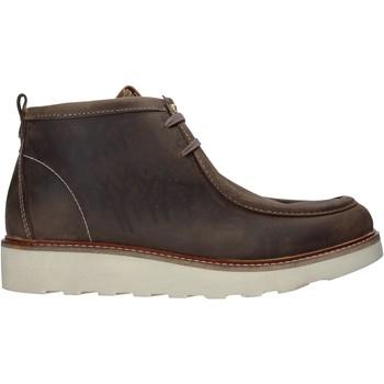 Schoenen Heren Laarzen Docksteps DSM204003 Bruin