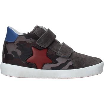 Schoenen Kinderen Lage sneakers Naturino 2015367 14 Grijs