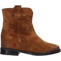 Schoenen Dames Laarzen Pregunta MAA3307 Bruin