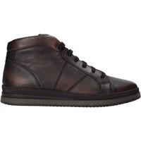 Schoenen Heren Laarzen IgI&CO 6135655 Bruin