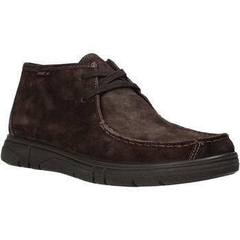 Schoenen Heren Laarzen Enval 6220822 Bruin