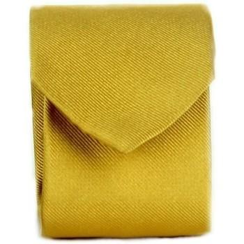 Textiel Heren Krawatte und Accessoires Michi D'amato CRAVATTA 002 Yellow
