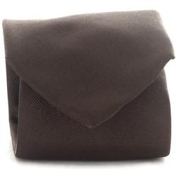 Textiel Heren Krawatte und Accessoires Michi D'amato CRAVATTA 001 Brown