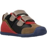 Schoenen Jongens Lage sneakers Biomecanics 201130 Veelkleurig