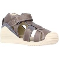 Schoenen Jongens Sandalen / Open schoenen Biomecanics 202140 Bruin