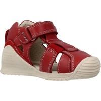 Schoenen Jongens Sandalen / Open schoenen Biomecanics 202140 Rood