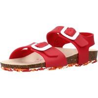 Schoenen Meisjes Sandalen / Open schoenen Garvalin 202663 Rood