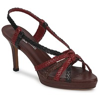 Schoenen Dames Sandalen / Open schoenen Stéphane Kelian PRISCILLE Brown / Rood