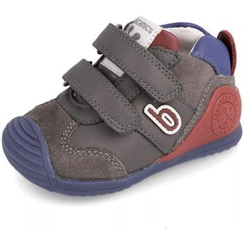 Schoenen Kinderen Laarzen Biomecanics 191166 Grijs