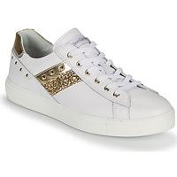 Schoenen Dames Lage sneakers NeroGiardini DRILLA Wit / Goud