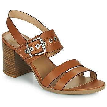 Schoenen Dames Sandalen / Open schoenen NeroGiardini GHILLO Cognac