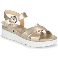 Schoenen Dames Sandalen / Open schoenen NeroGiardini LONELESS Goud