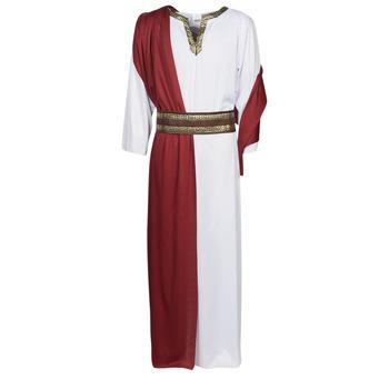 Textiel Heren Verkleedkleding Fun Costumes COSTUME ADULTE JULIUS Multicolour