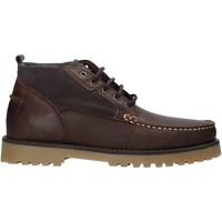 Schoenen Heren Laarzen Docksteps DSE106031 Bruin