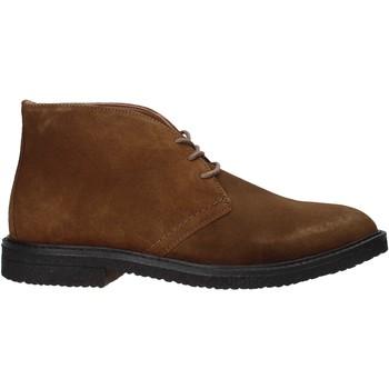 Schoenen Heren Laarzen Docksteps DSE106025 Bruin