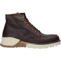 Schoenen Heren Sandalen / Open schoenen Docksteps DSM106202 Bruin