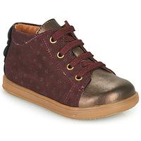 Schoenen Meisjes Lage sneakers Little Mary CLELIE Bordeaux