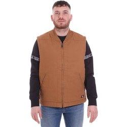 Textiel Heren Vesten / Cardigans Dickies DK0A4X8UBD01 Bruin