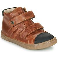 Schoenen Jongens Hoge sneakers GBB KERWAN Brown