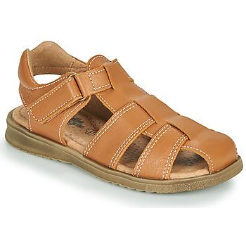 Schoenen Jongens Sandalen / Open schoenen Citrouille et Compagnie MELTOUNE Brown