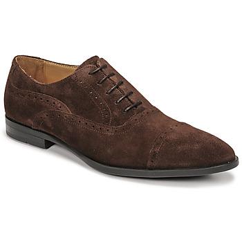 Schoenen Heren Derby & Klassiek Pellet ALEX Brown