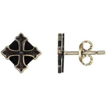 Horloges & Sieraden Heren Oorbellen Phebus Boucles d'oreilles  Legend Bronze