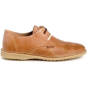 Schoenen Heren Derby & Klassiek Colour Feet ATACAMA Brown