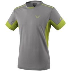 Textiel Heren T-shirts korte mouwen Dynafit Vertical 2 M SS Gris, Vert clair