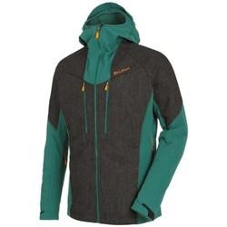Textiel Heren Jacks / Blazers Salewa Sesvenna Wodst M Jkt Gris, Vert