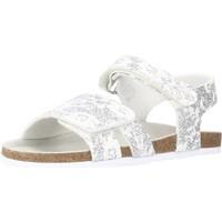 Schoenen Meisjes Sandalen / Open schoenen Chicco FIORE Zilver