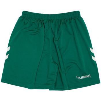 Textiel Heren Korte broeken / Bermuda's Hummel  Groen