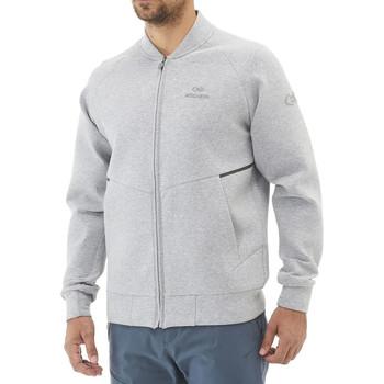 Textiel Heren Sweaters / Sweatshirts Eider  Grijs