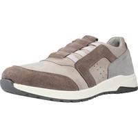 Schoenen Heren Lage sneakers Stonefly WHISPER M. 2 Bruin