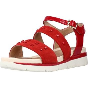 Schoenen Dames Sandalen / Open schoenen Stonefly ELODY 1 VELOUR Rood